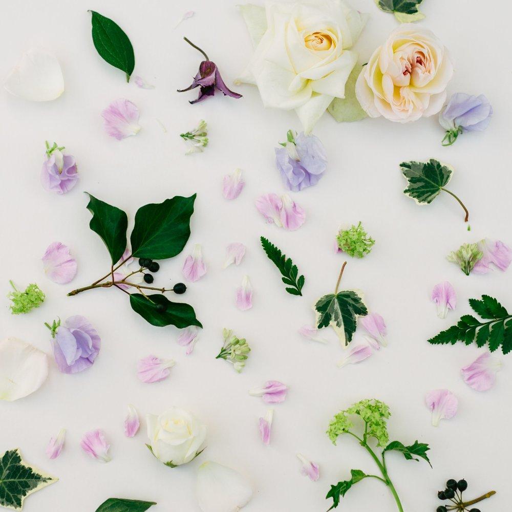 The Botanical Affair