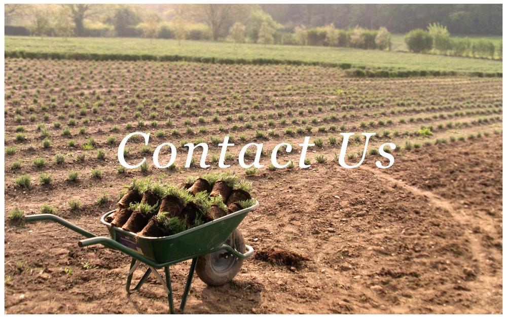 contact-thumb.jpg