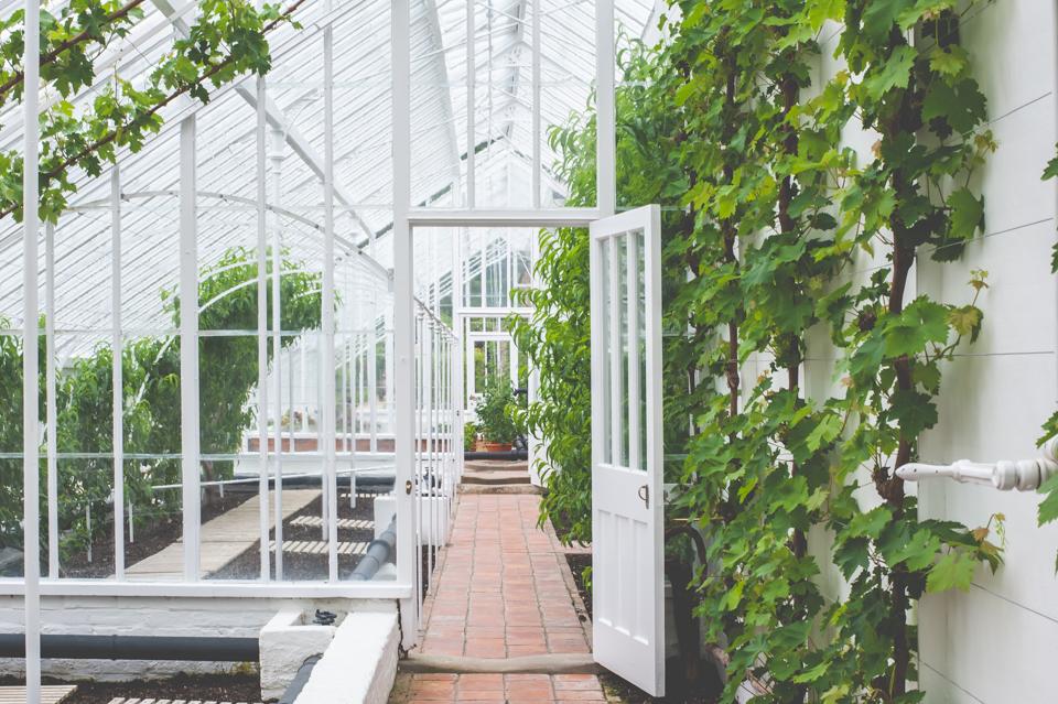 West Dean Gardens-14.jpg