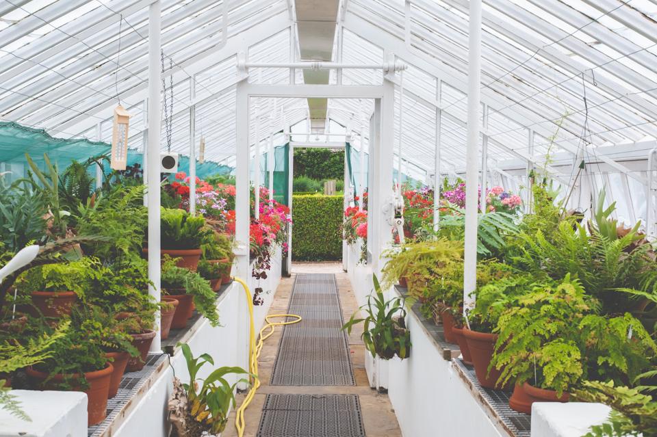 West Dean Gardens-36.jpg