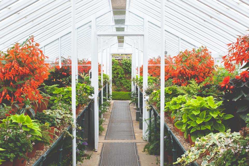 West Dean Gardens-48.jpg