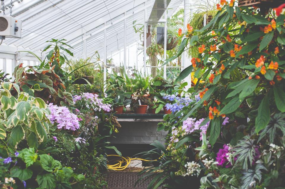 West Dean Gardens-66.jpg