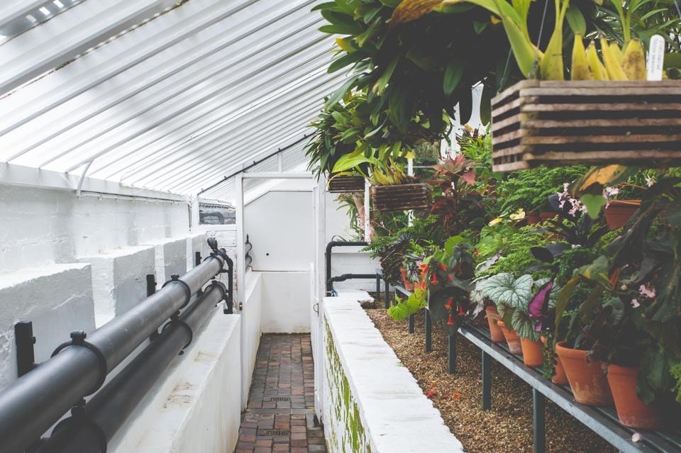 West Dean Gardens-100.jpg