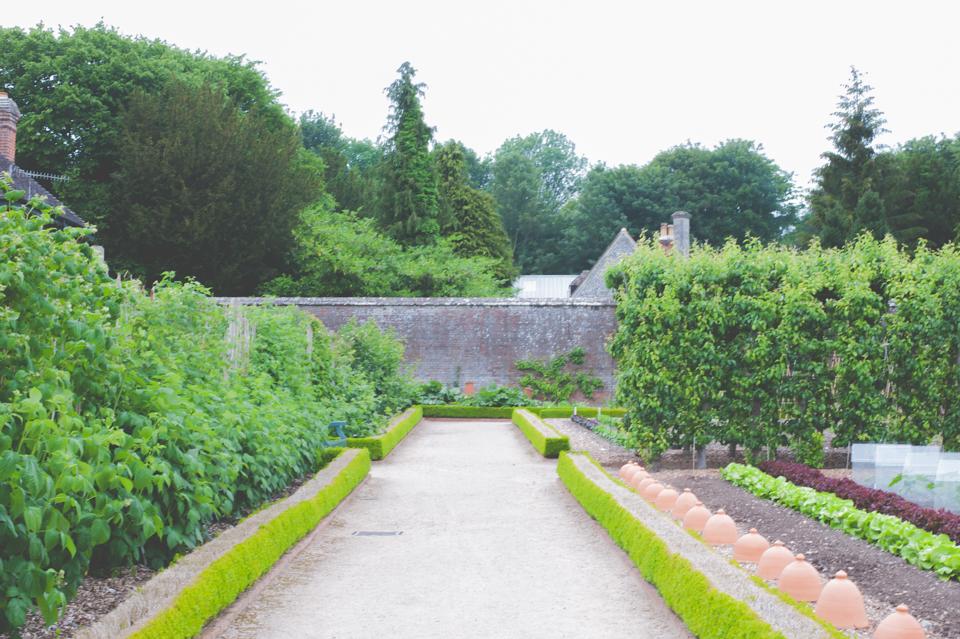 West Dean Gardens-110.jpg