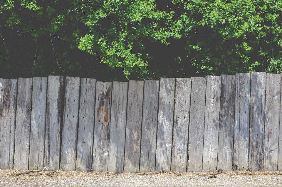 West Dean Gardens-20.jpg