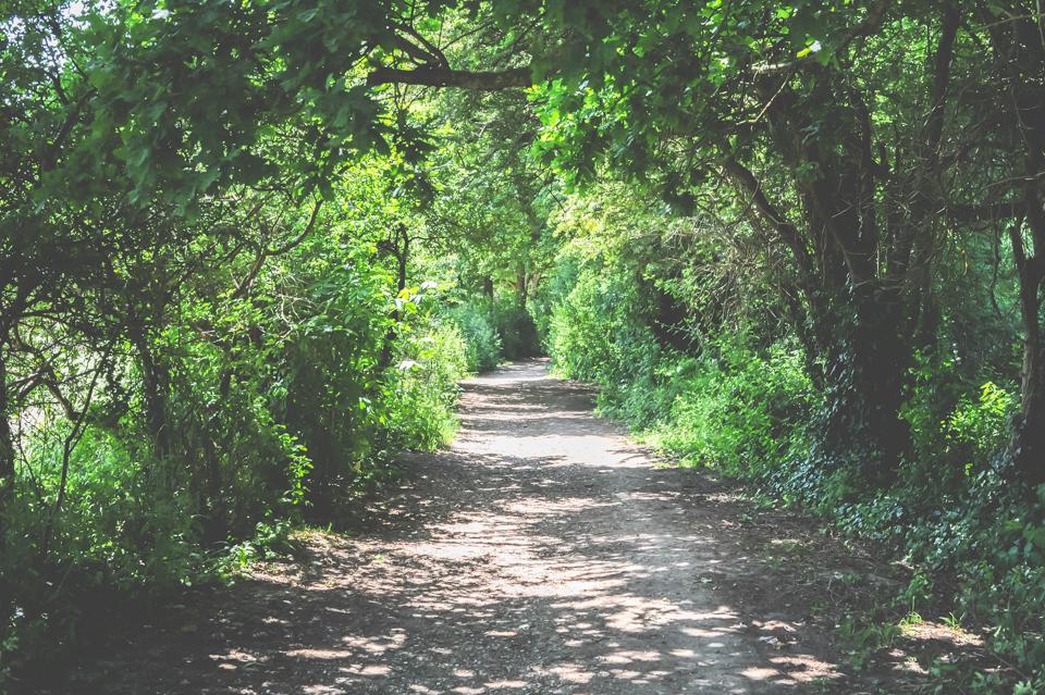 West Dean Gardens-32.jpg