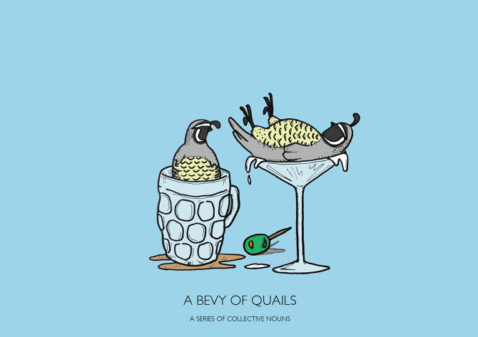 A-BEVY-OF-QUAILS-JPEG_670.jpg