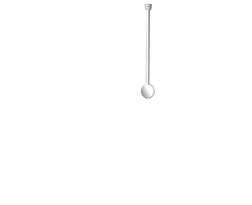 STIR-logo-transparent.png
