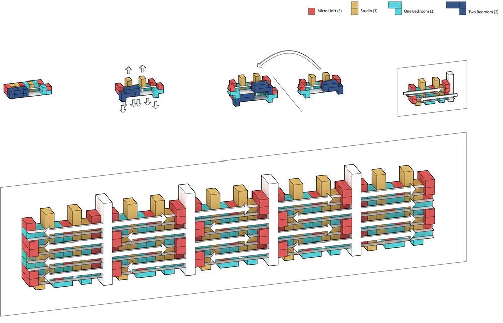 Final Morphology Diagram 2.jpg
