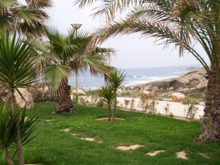 MATURE GARDEN - FOR SALE