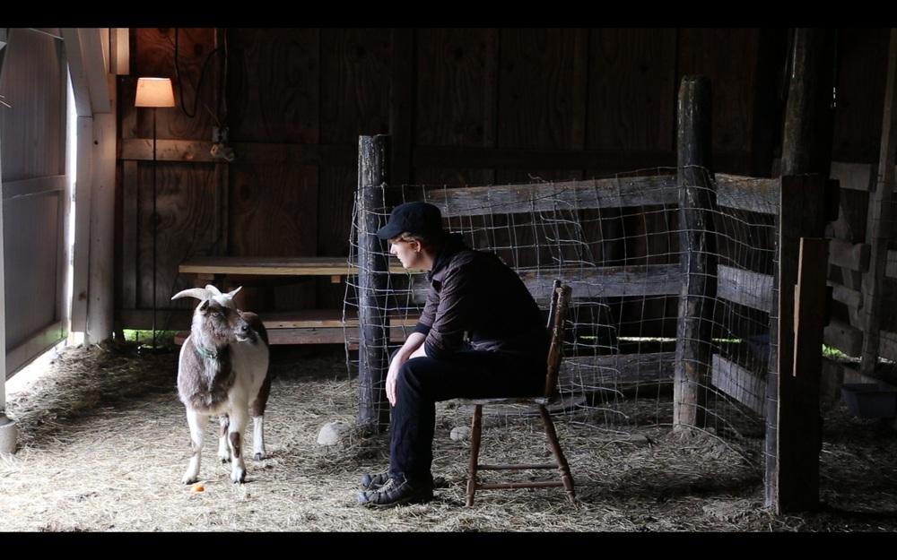 SOP-NOR NY goat.jpg