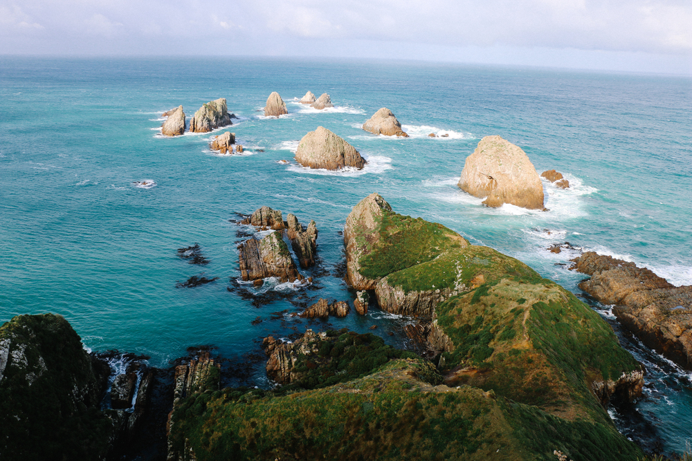 Nugget Point New Zealand Voyage Collective Shelby McGill