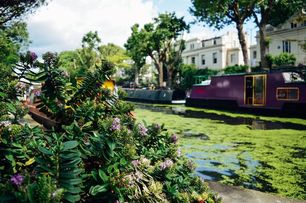 Little Venice London Fi McCrindle Voyage Collective