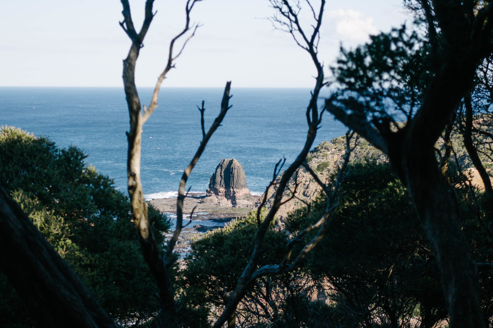 Cape Schanck Mornington Peninsula Melbourne Voyage Collective Billie Norman