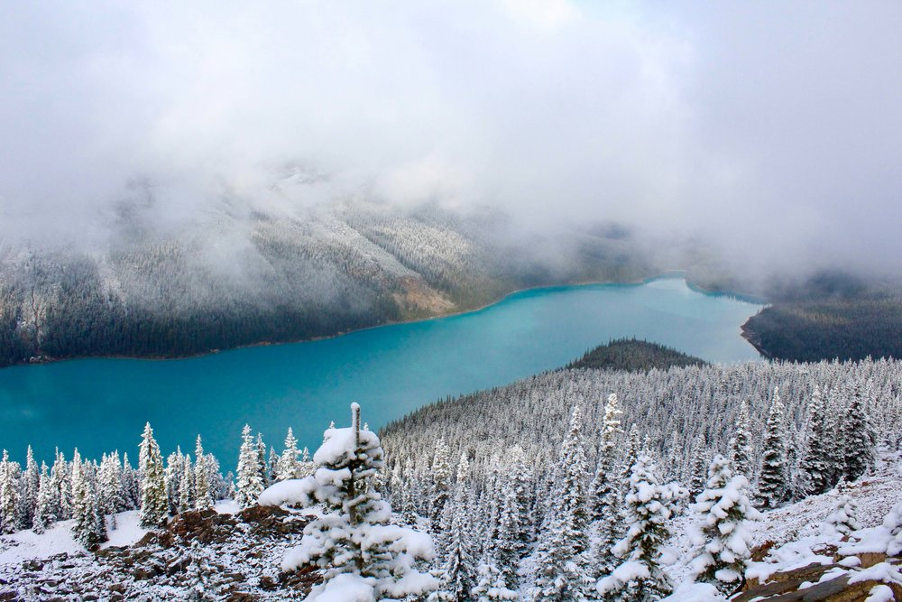 Peyto Lake Icefields Parkway Alberta Voyage Collective Randal Smith