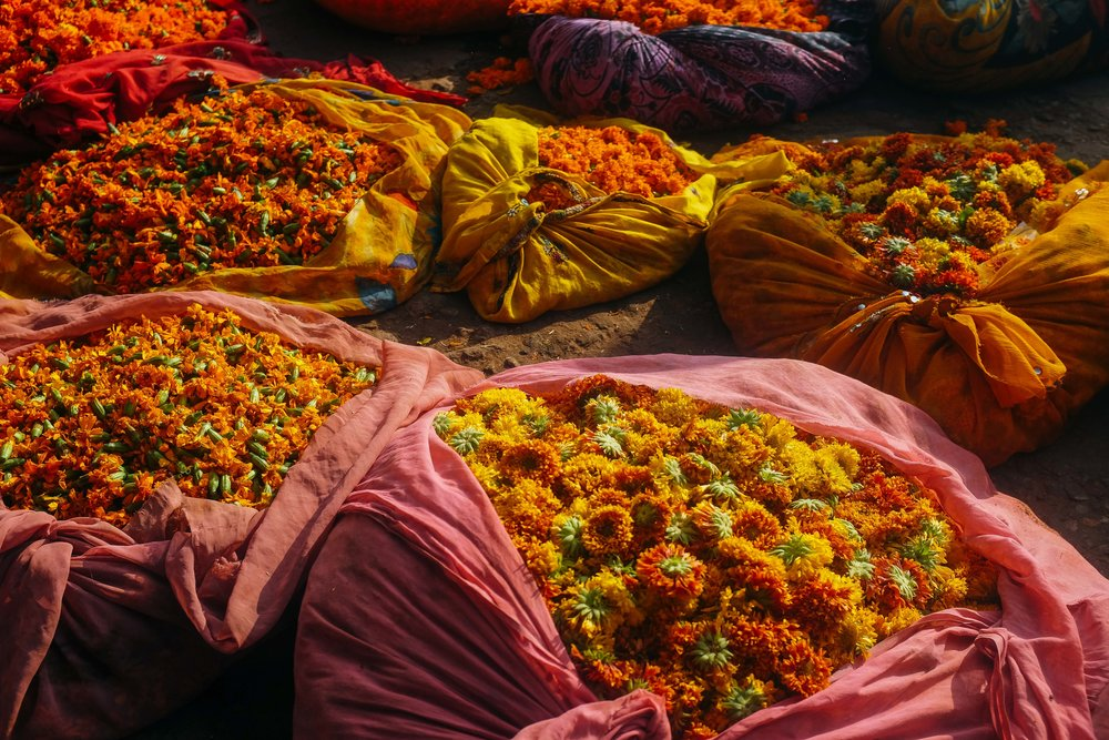 Thrift Shopping Central Market Pink City Jaipur Voyage Collective Abi Tudor