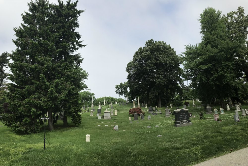 slight panarama looking up the hill toward HERO GRAVE
