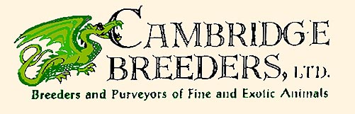 Cambridge Breeders Logo.jpg