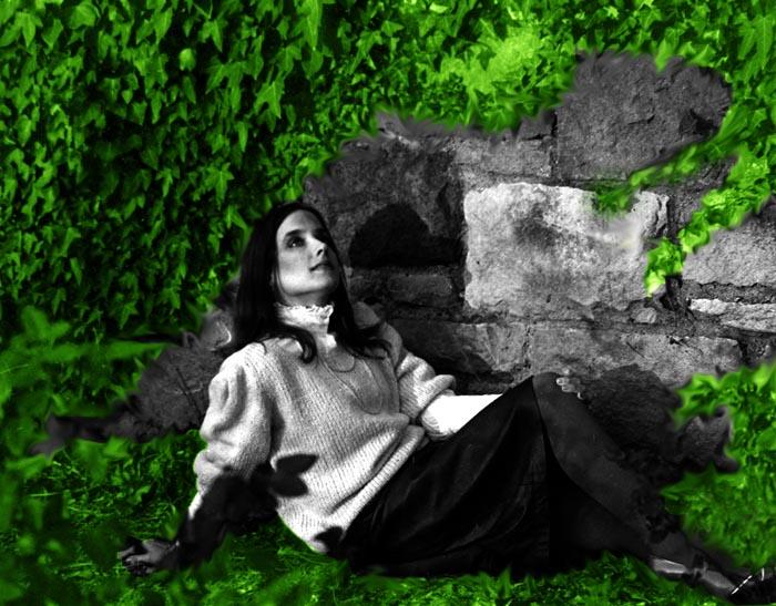 Noelle Wall .jpg