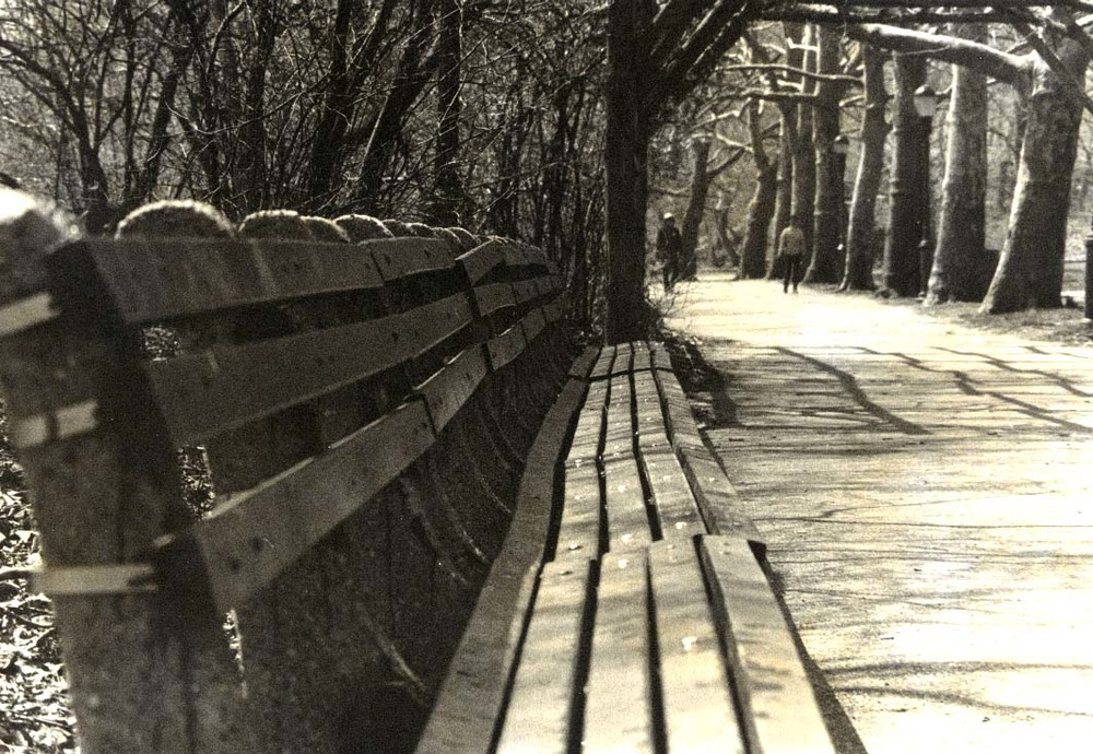 long empty park bench copy.jpg