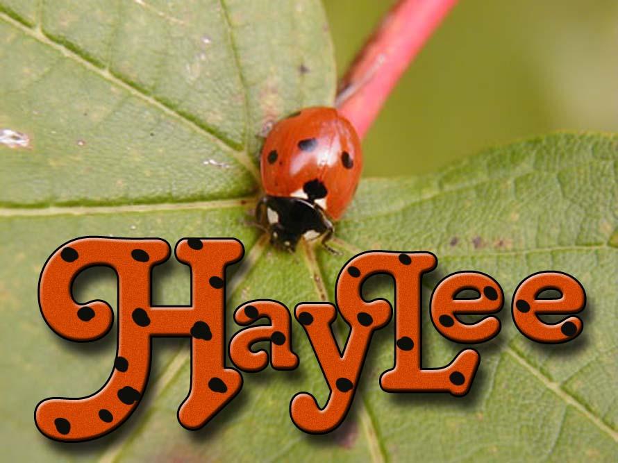 Haylee card.jpg