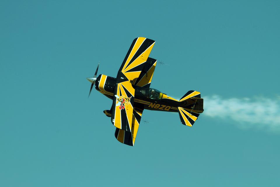RumbleBee-Flightgrn.jpg