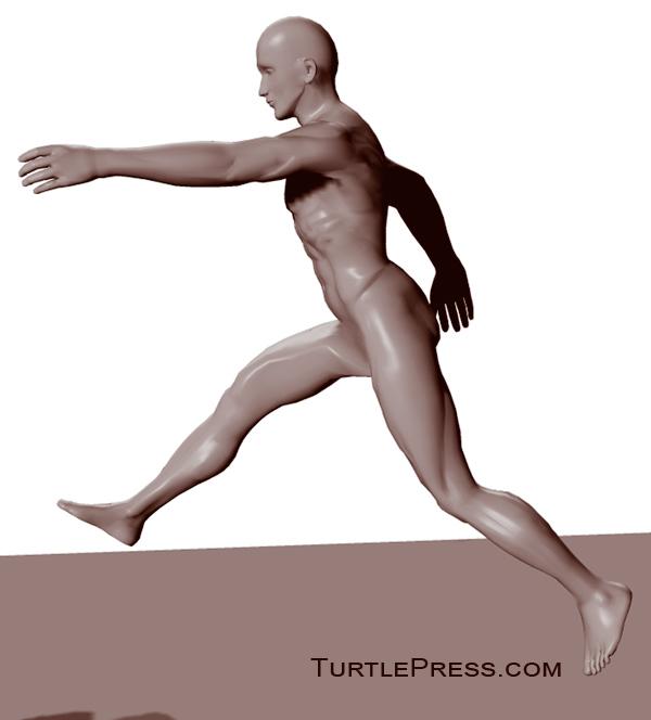 The correct form for Speed Hop Jog Plyometrics