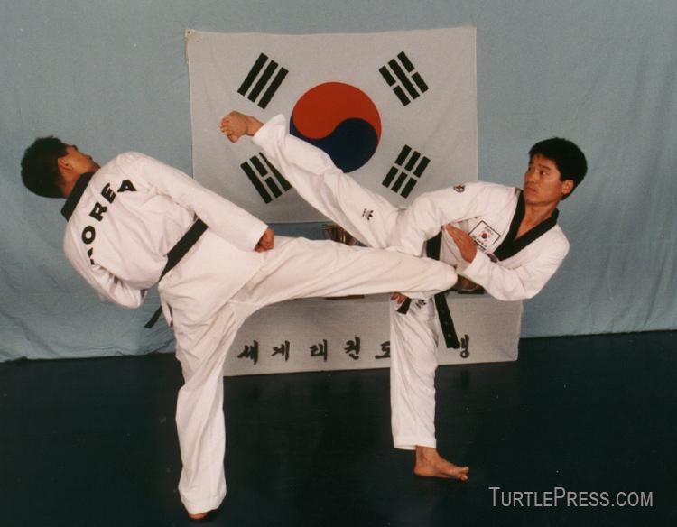 Martial arts training at home free