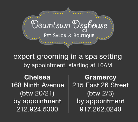 DowntownDoghouseHOMEBanner1218142s.jpg
