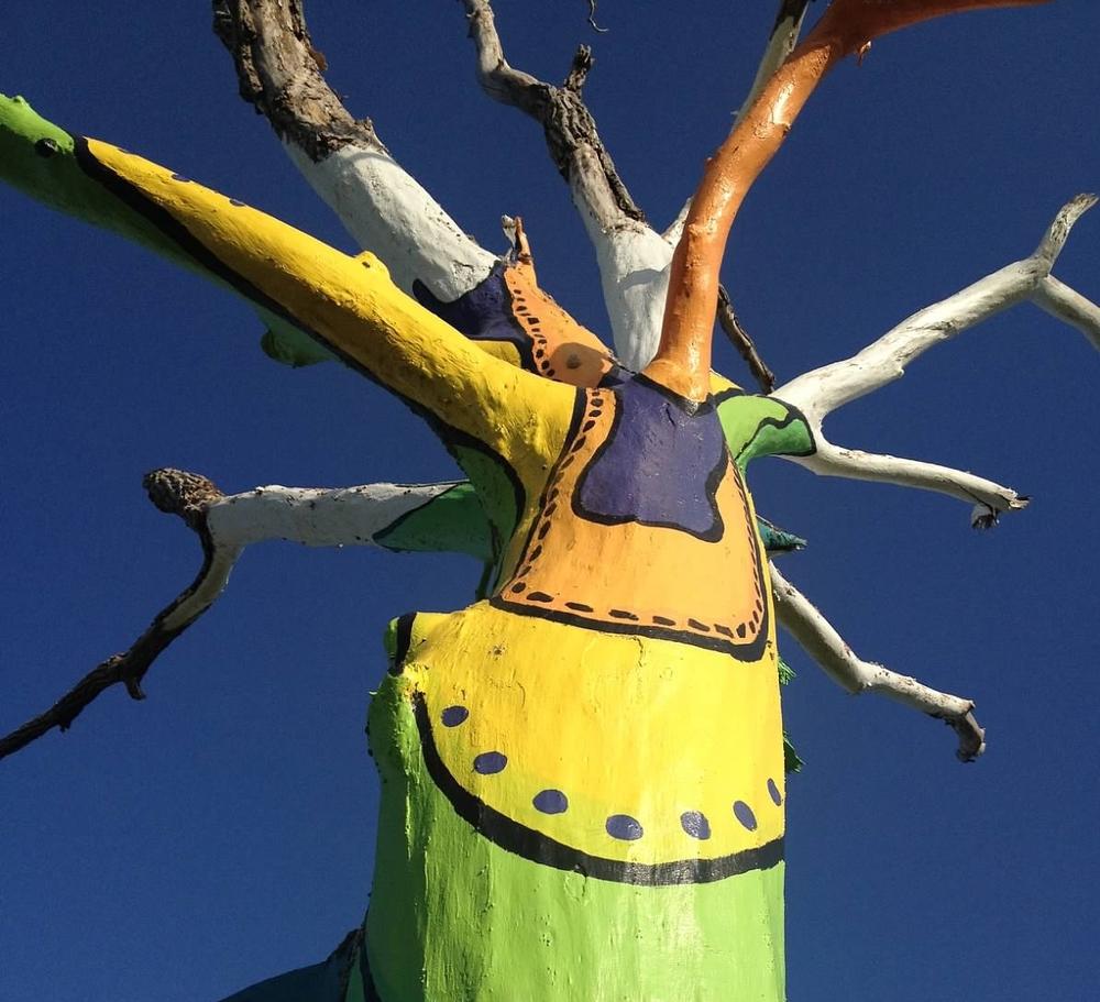 spirit tree.JPG