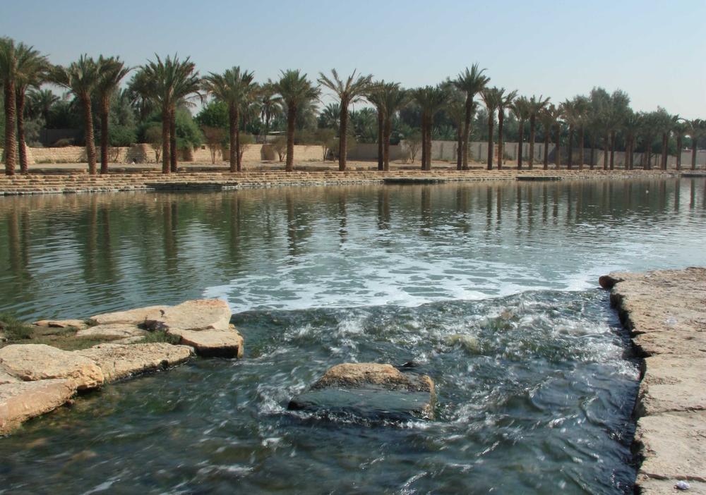 Environmental Planning-Wadi Hanifa.jpg