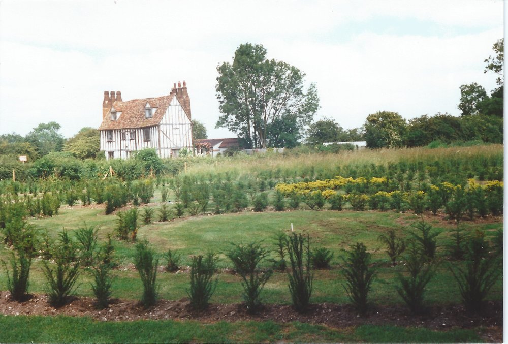 The maze in 1993 which authors from the book helped to plant