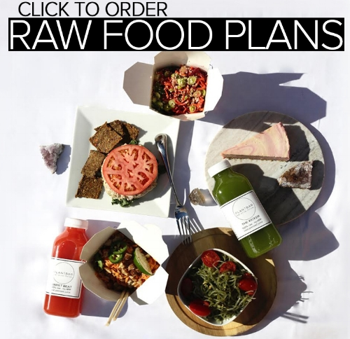 plantbar raw food plans