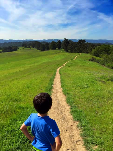 path forward