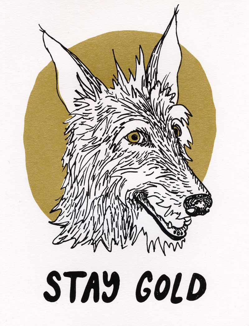 staygold-website.jpg