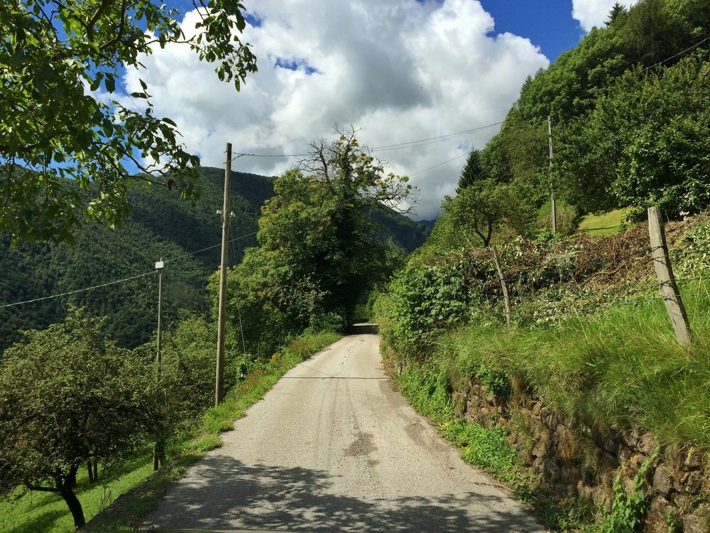 The road I followed through the Italian Alps