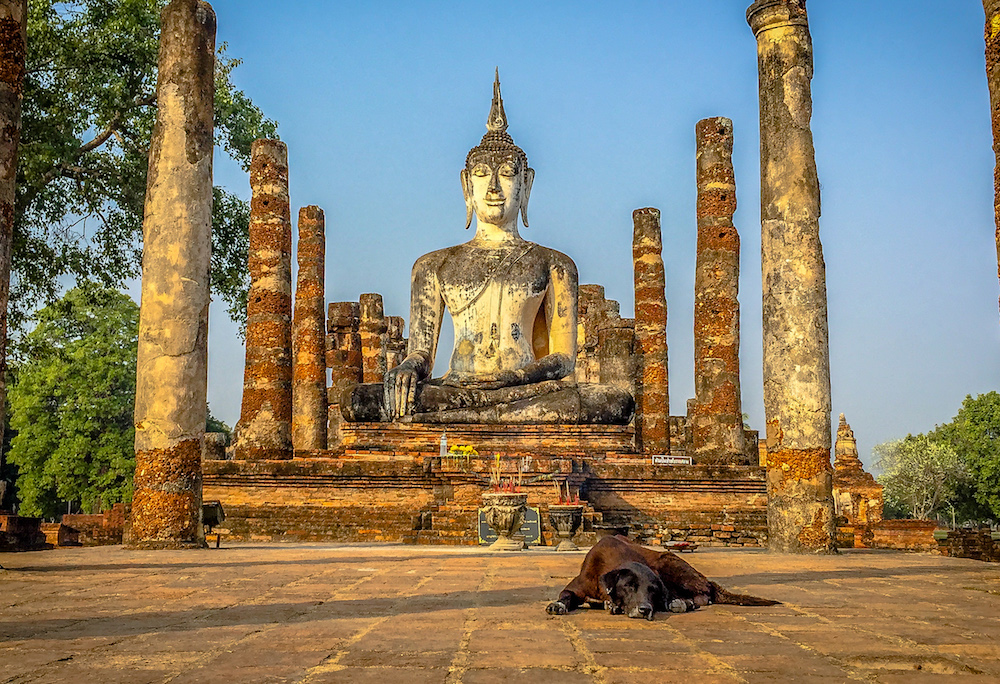 Ancient Thai Temple and Dog reduced size no watermark.jpg
