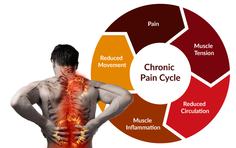 back-pain-cycle-bigger.png