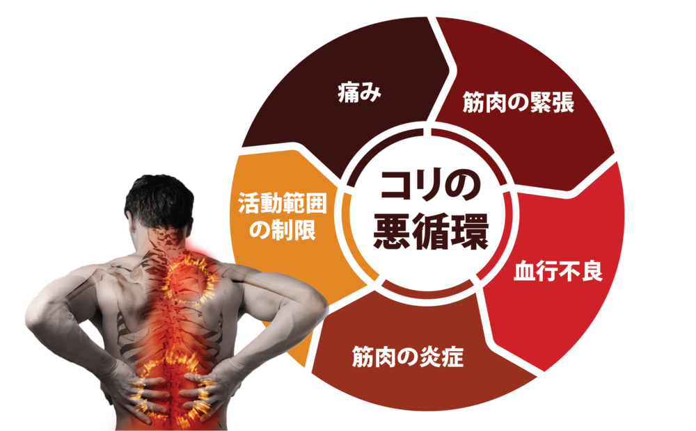 pain cycle-jp-01.png