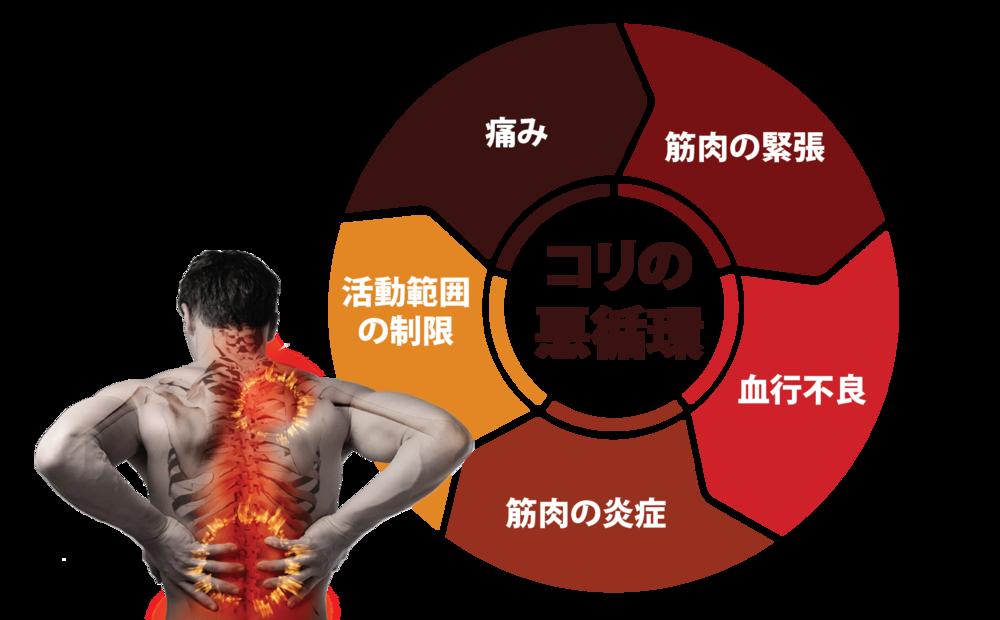pain cycle-jp-01.png