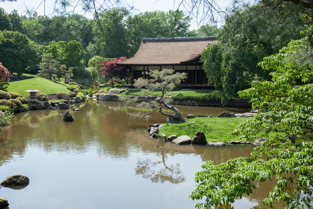 Shofuso Japanese House and Garden, now open to the public!