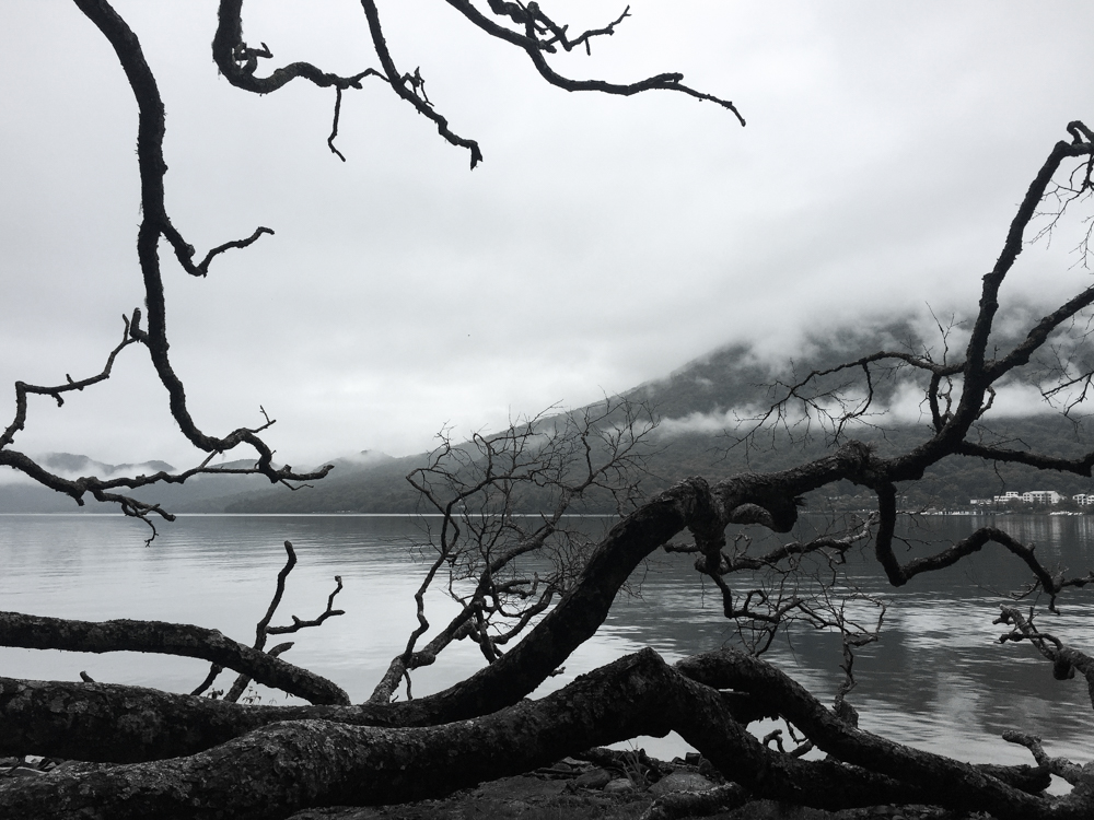 Nikko-10.jpg