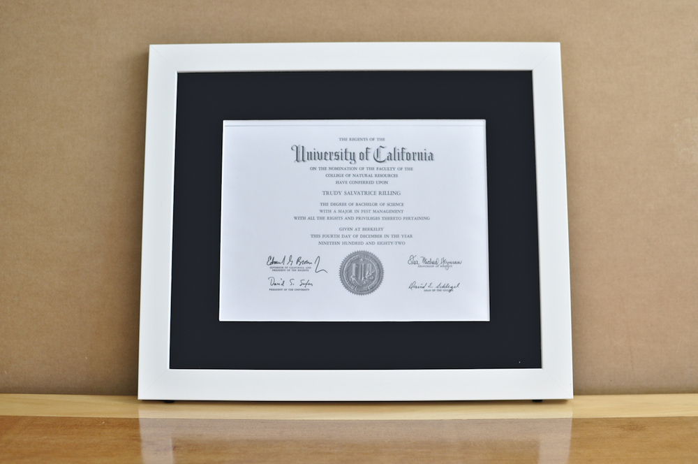 "Style: Medium Frame Color: White Mat: 2"" Black Diploma: 11"" W x 8 1/2"" H"
