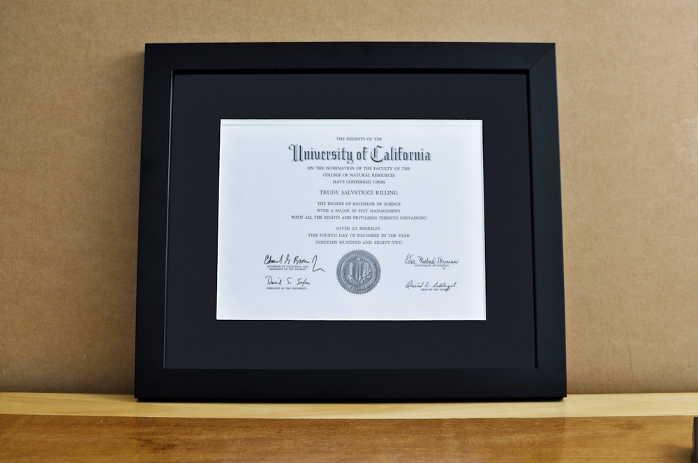 diploma frames for college law med school mountary style medium frame color black mat 2 black diploma 11