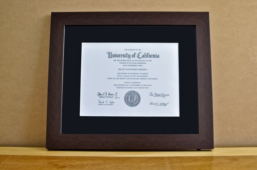 "Style: Medium Frame Color: Walnut Mat: 2"" Black Diploma: 11"" W x 8 1/2"" H"