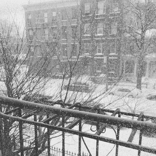 stay warm #brooklyn! #blizzard #jonas #snow