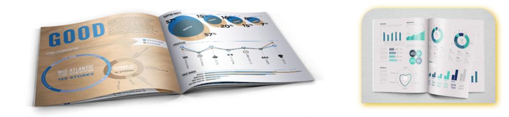 Infographic Portfolios.png