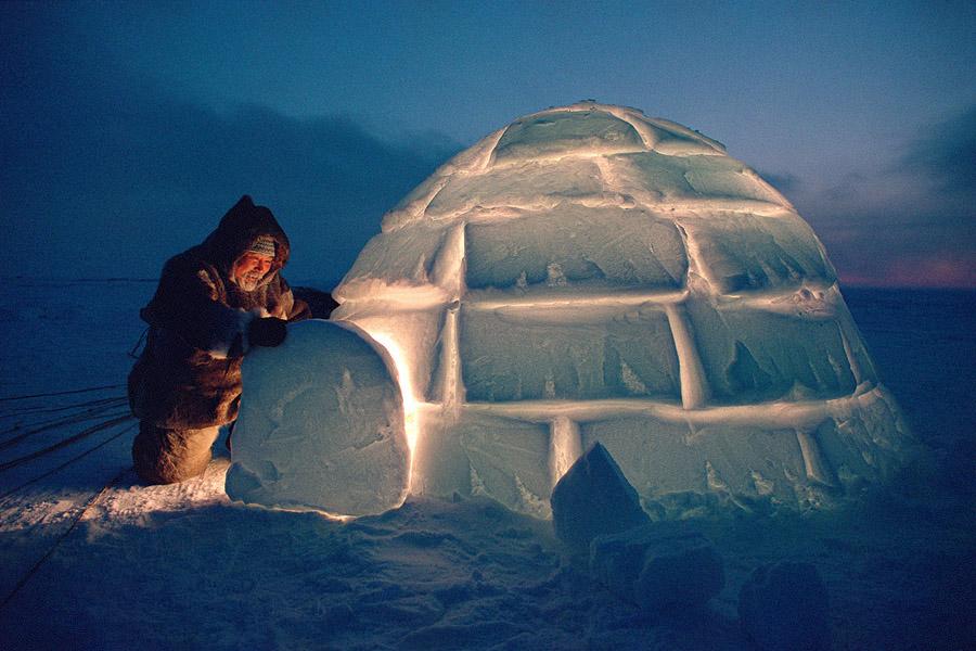 arctic-blog-2-gif.jpg