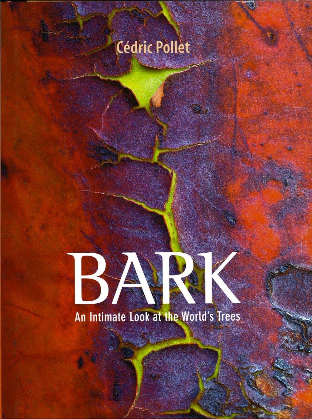 4 bark_001.jpg
