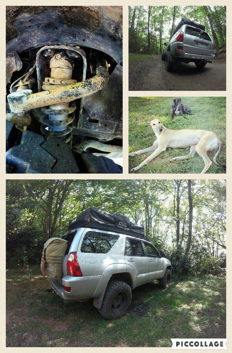 This 4runner is funded and build by a single income father, who loves nothing more than spending time with his 2 daughters and beautiful wife. The truck hasn't been to exotic locations, and is only special in that it has helped create a family bond stronger than anything. We usually stuff 2 huge greyhounds in the back, in hopes that they don't get car sick throw up all over everything. The 4runner has a Stage 2 ICON Vehicle Dynamics lift, ICON tubular upper control arms, 255-80-R17 Cooper ST MAXX tires, a CVT Mt Rainier extended tent sitting on a PrInSu design studio full length roof rack. It's far from finished, and parts are bought as finances allow. Perhaps I will complete the truck by the time I retire. So is life, and until then, we will keep exploring, and cleaning up all this wonderful dog puke. Zack Smith • 2005 Toyota 4Runner